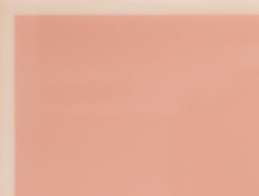 Pink Blush Top